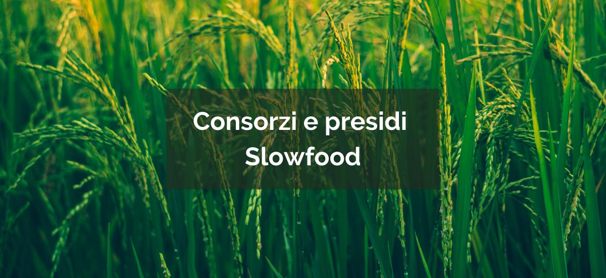 Consorzi e Presidi Slow Food: chi partecipa?