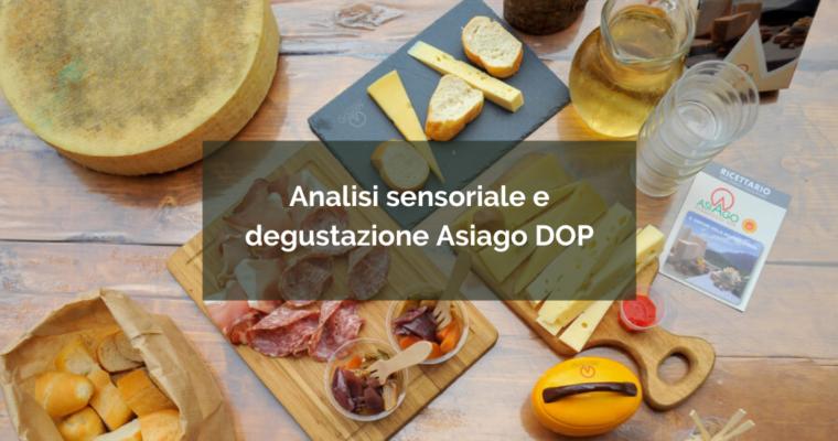 Asiago DOP: degustazione a 5 sensi!